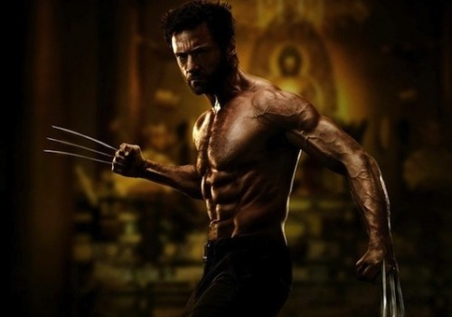 PHOTO-Hugh-Jackman-tout-en-muscles-sur-la-premiere-image-de-The-Wolverine_portrait_w532
