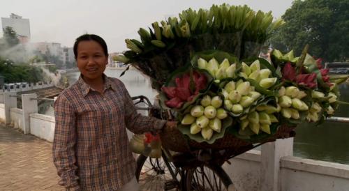 marchande-lotus