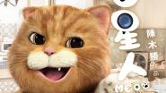 meow_big
