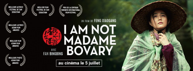 i am not madame bovary