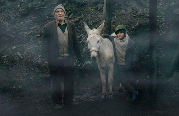 ahmadlou-cinema-donkey